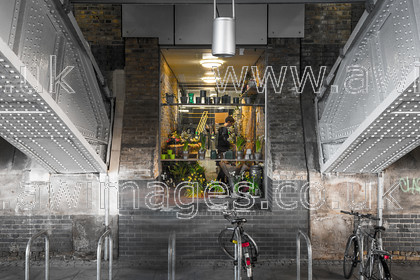 ThamesWalk0415-001 